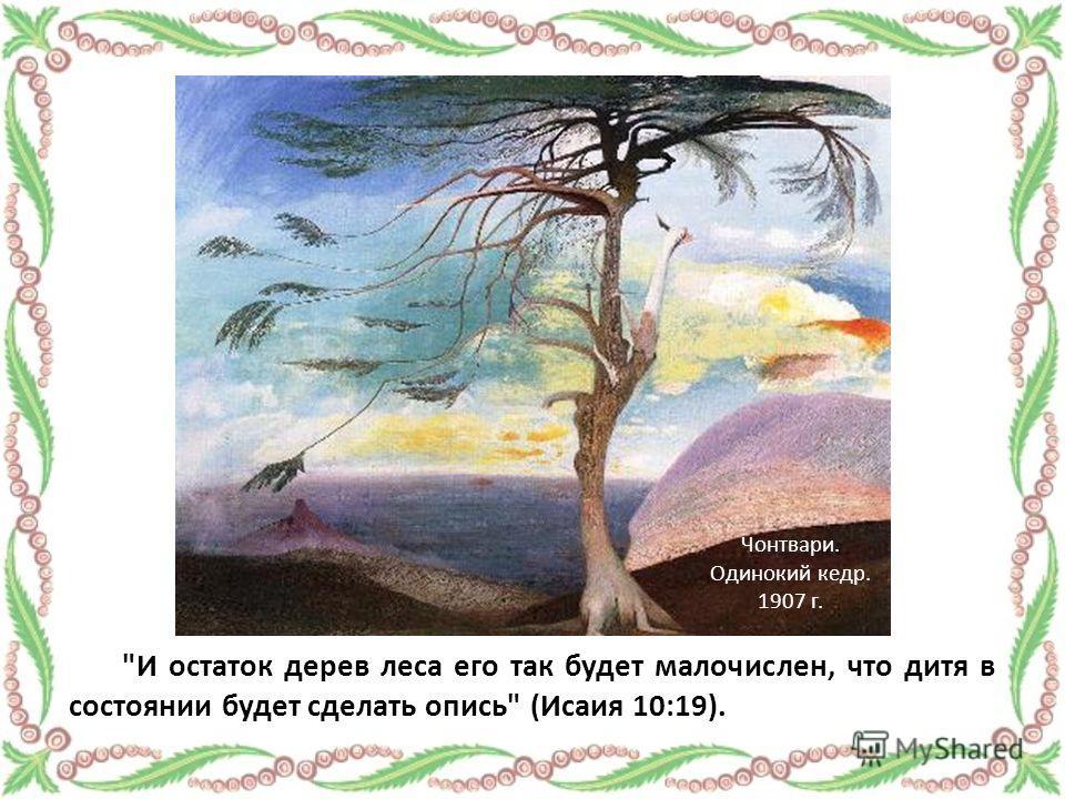 И остаток дерев леса его так будет малочислен, что дитя в состоянии будет сделать опись (Исаия 10:19). Чонтвари. Одинокий кедр. 1907 г.