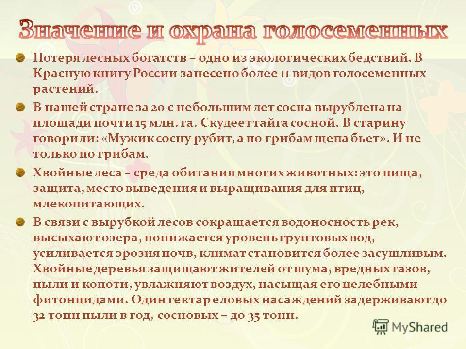 Потеря лесных богатств – одно из экологических бедствий. В Красную книгу России занесено более 11 видов голосеменных растений. В нашей стране за 20 с небольшим лет сосна вырублена на площади почти 15 млн. га. Скудеет тайга сосной. В старину говорили: