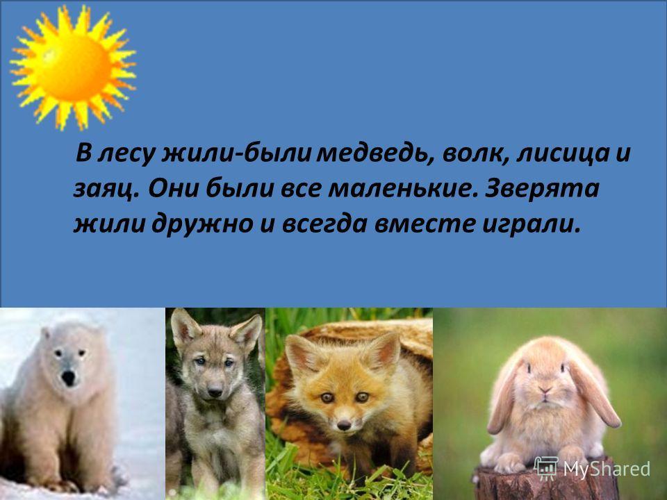 В лесу жили-были медведь, волк, лисица и заяц. Они были все маленькие. Зверята жили дружно и всегда вместе играли.