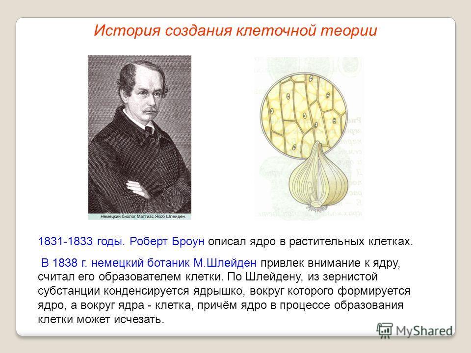 1831-1833 годы. Роберт Броун описал ядро в растительных клетках. В 1838 г. немецкий ботаник М.Шлейден привлек внимание к ядру, считал его образователем клетки. По Шлейдену, из зернистой субстанции конденсируется ядрышко, вокруг которого формируется я