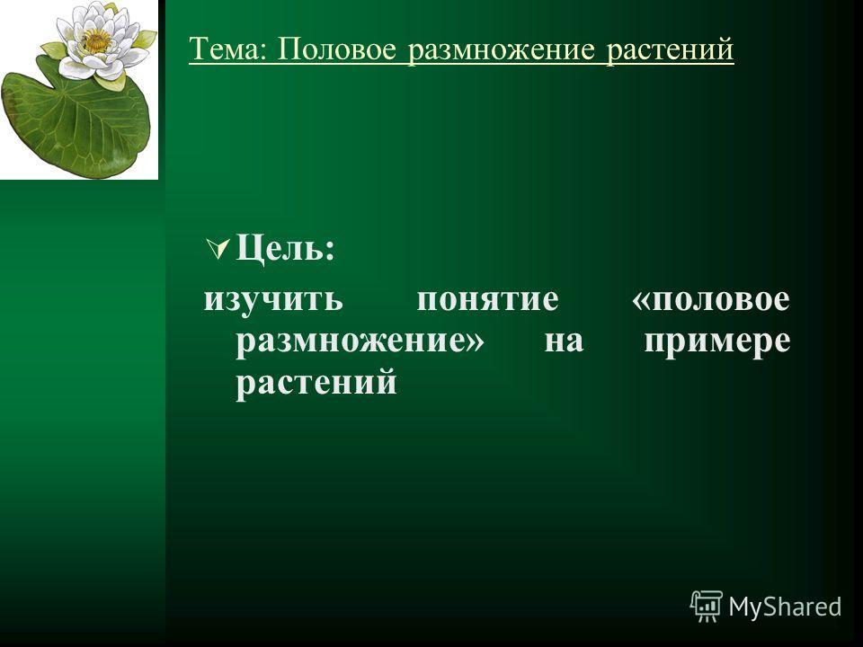 Тема: Половое размножение растений Цель: изучить понятие «половое размножение» на примере растений