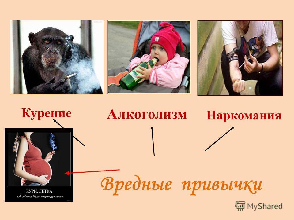 Вредные привычки Курение Алкоголизм Наркомания