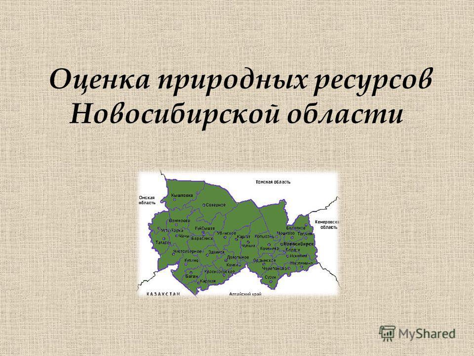 Оценка природных ресурсов Новосибирской области