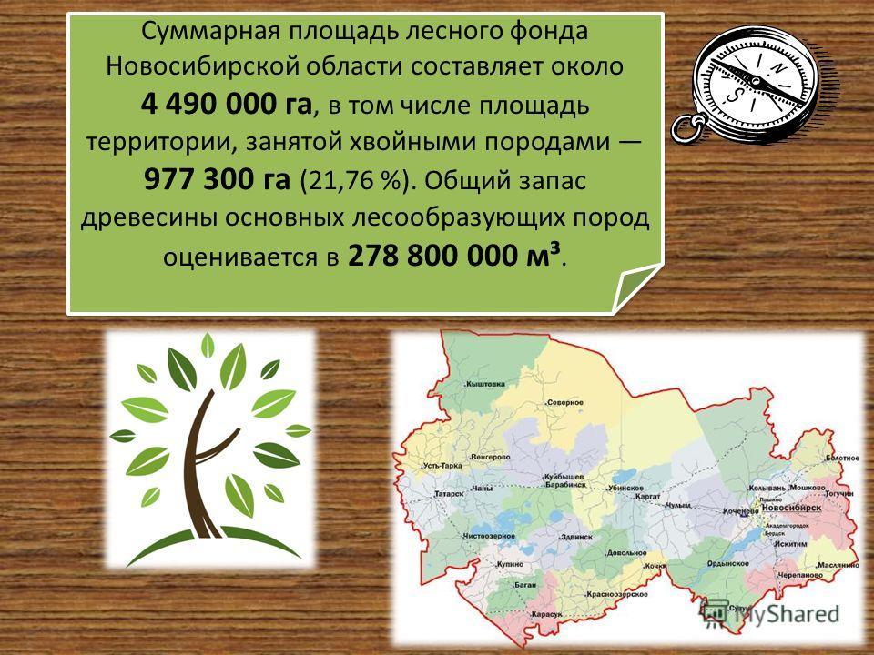 Суммарная площадь лесного фонда Новосибирской области составляет около 4 490 000 га, в том числе площадь территории, занятой хвойными породами 977 300 га (21,76 %). Общий запас древесины основных лесообразующих пород оценивается в 278 800 000 м³.