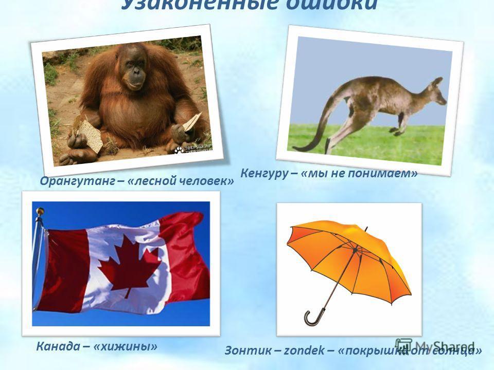 Узаконенные ошибки Орангутанг – «лесной человек» Кенгуру – «мы не понимаем» Канада – «хижины» Зонтик – zondek – «покрышка от солнца»