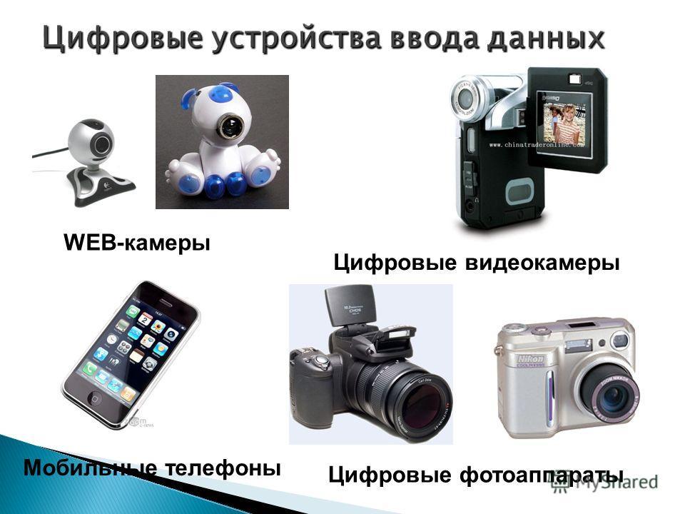 WEB-камеры Мобильные телефоны Цифровые фотоаппараты Цифровые видеокамеры