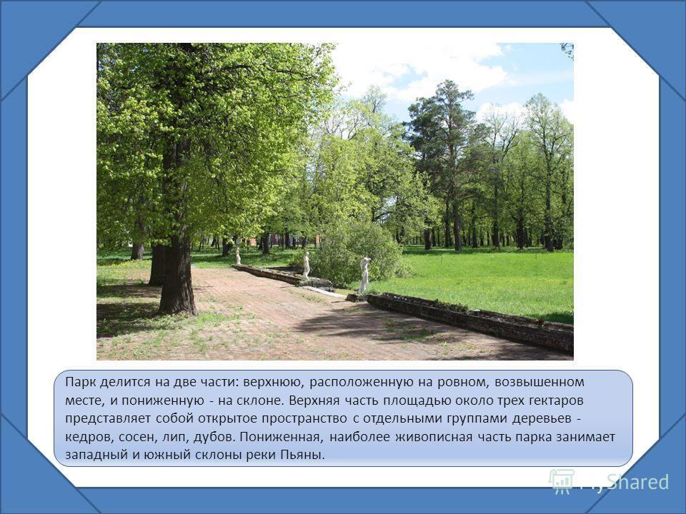 Парк делится на две части: верхнюю, расположенную на ровном, возвышенном месте, и пониженную - на склоне. Верхняя часть площадью около трех гектаров представляет собой открытое пространство с отдельными группами деревьев - кедров, сосен, лип, дубов.