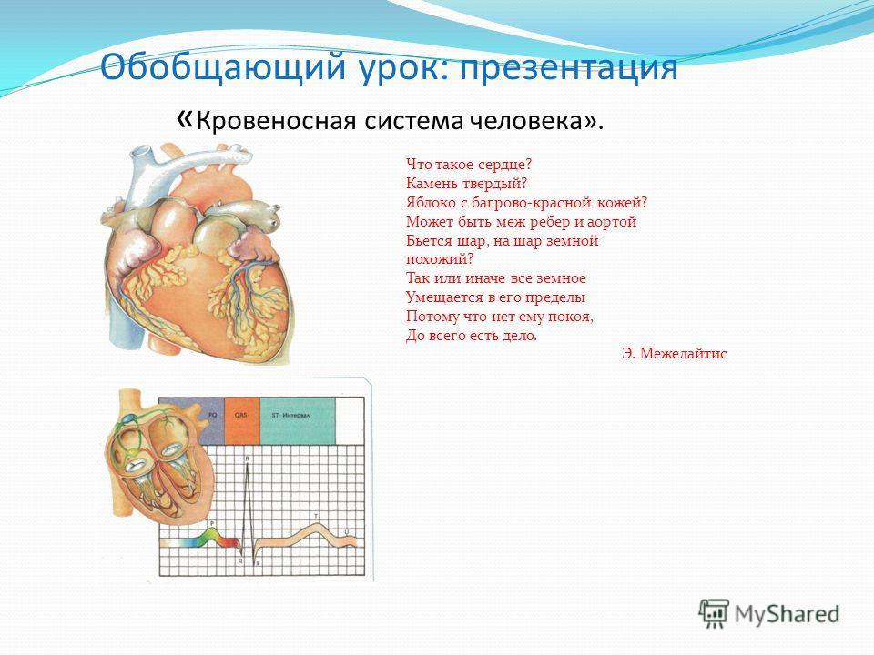 Сравнительная таблица: Живые организмыСходствоРазличие 1. Рыбы 2. Земноводные