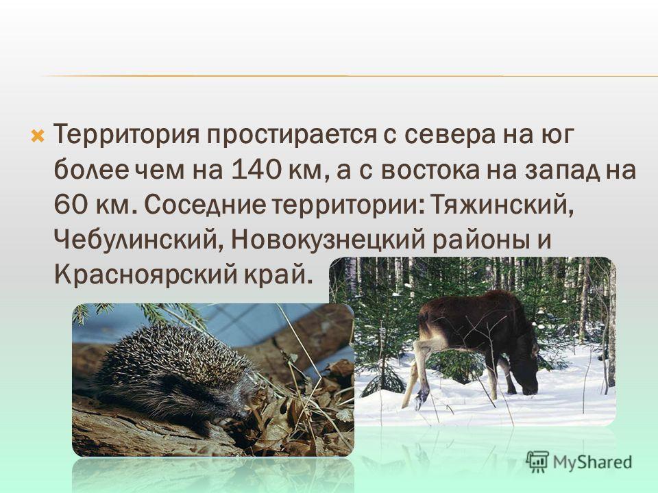 Территория простирается с севера на юг более чем на 140 км, а с востока на запад на 60 км. Соседние территории: Тяжинский, Чебулинский, Новокузнецкий районы и Красноярский край.