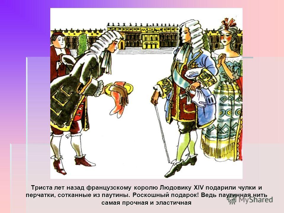 Триста лет назад французскому королю Людовику XIV подарили чулки и перчатки, сотканные из паутины. Роскошный подарок! Ведь паутинная нить самая прочная и эластичная