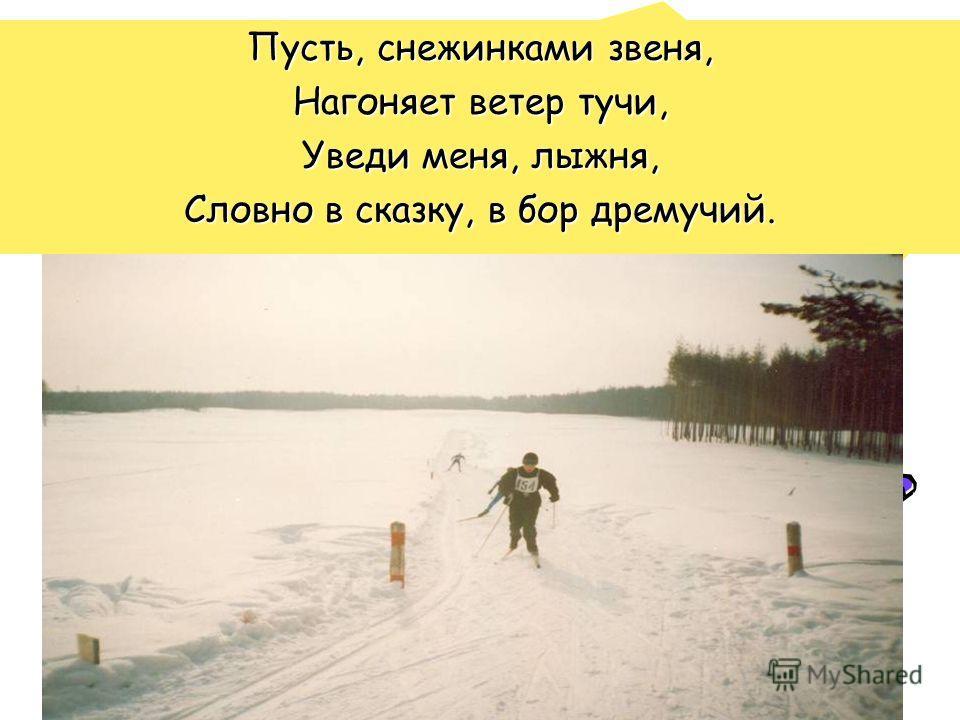 Пусть, снежинками звеня, Нагоняет ветер тучи, Уведи меня, лыжня, Словно в сказку, в бор дремучий.