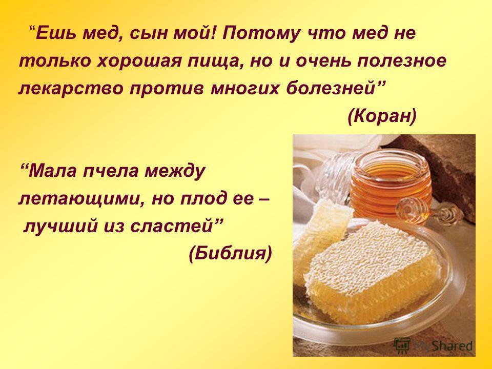 Ешь мед, сын мой! Потому что мед не только хорошая пища, но и очень полезное лекарство против многих болезней (Коран) Мала пчела между летающими, но плод ее – лучший из сластей (Библия)