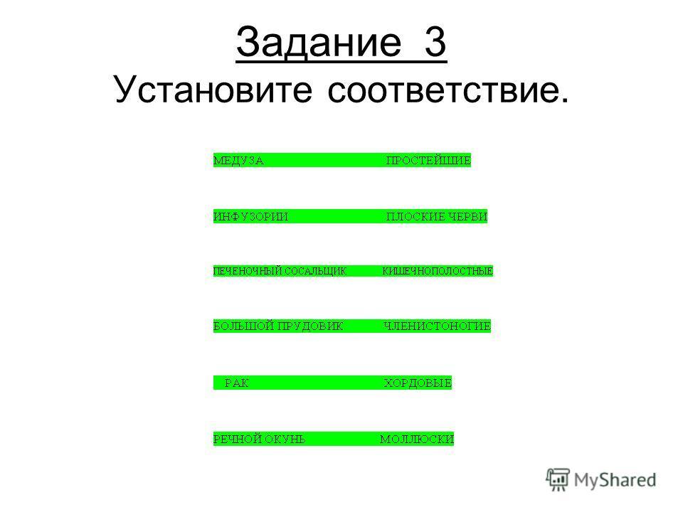 Задание 3 Установите соответствие.