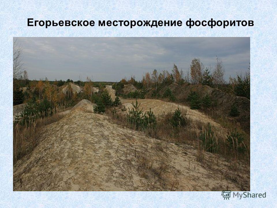 Егорьевское месторождение фосфоритов