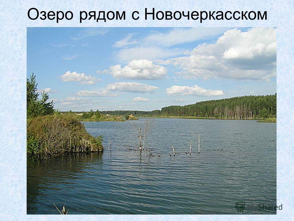 Озеро рядом с Новочеркасском