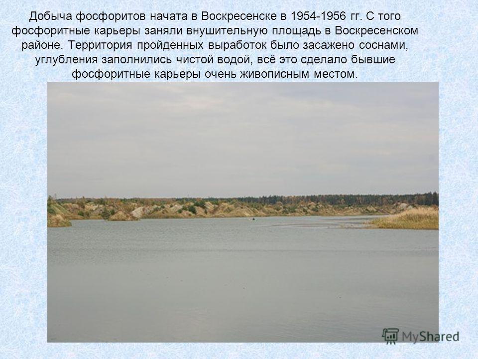 Добыча фосфоритов начата в Воскресенске в 1954-1956 гг. С того фосфоритные карьеры заняли внушительную площадь в Воскресенском районе. Территория пройденных выработок было засажено соснами, углубления заполнились чистой водой, всё это сделало бывшие