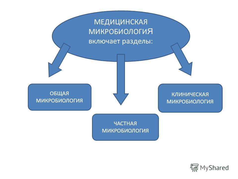 МЕДИЦИНСКАЯ МИКРОБИОЛОГИ Я включает разделы: ОБЩАЯ МИКРОБИОЛОГИЯ ЧАСТНАЯ MИКРОБИОЛОГИЯ КЛИНИЧЕСКАЯ МИКРОБИОЛОГИЯ