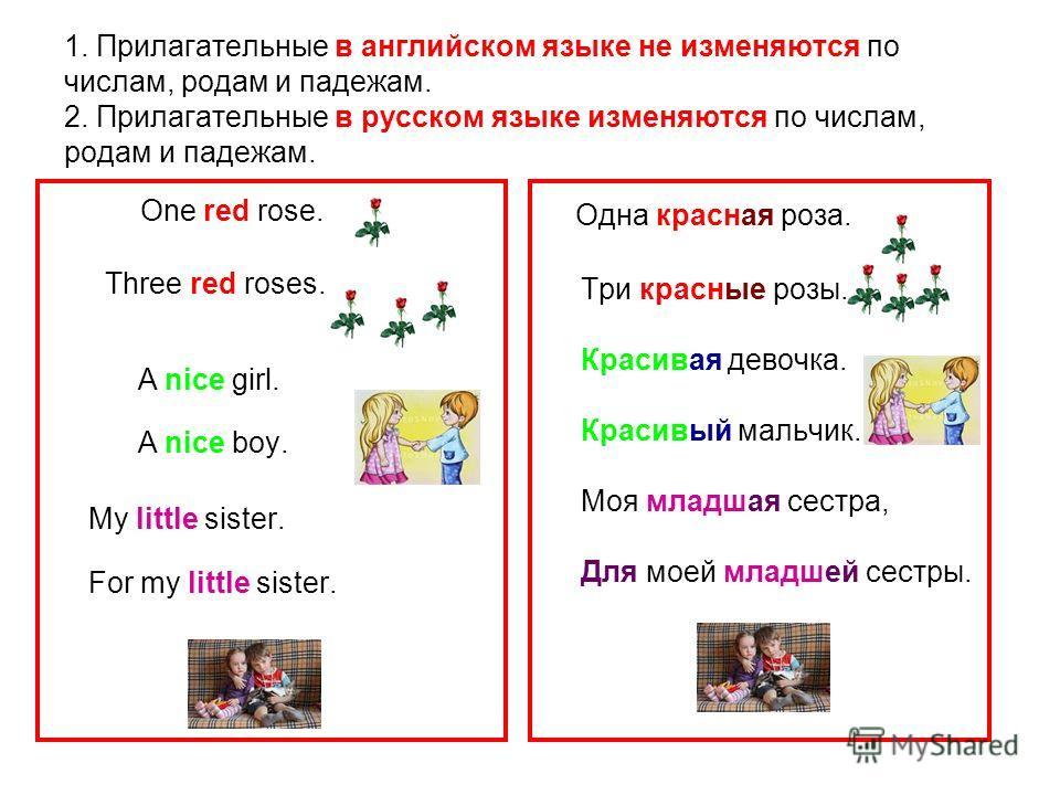 1. Прилагательные в английском языке не изменяются по числам, родам и падежам. 2. Прилагательные в русском языке изменяются по числам, родам и падежам. One red rose. Three red roses. A nice girl. A nice boy. My little sister. For my little sister. Од