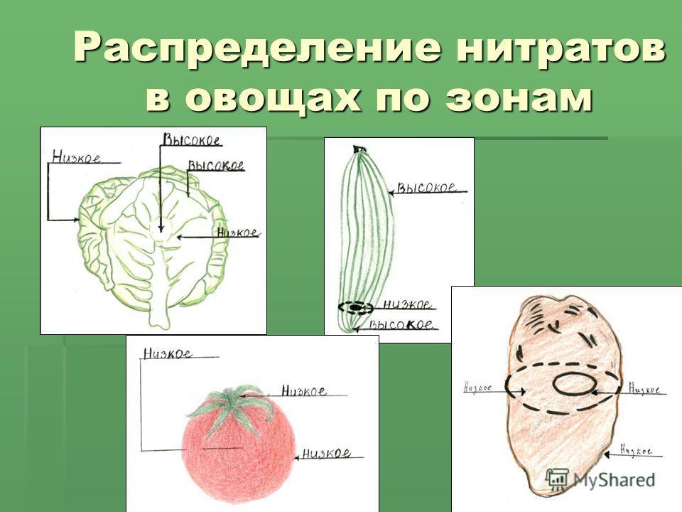 Распределение нитратов в овощах по зонам