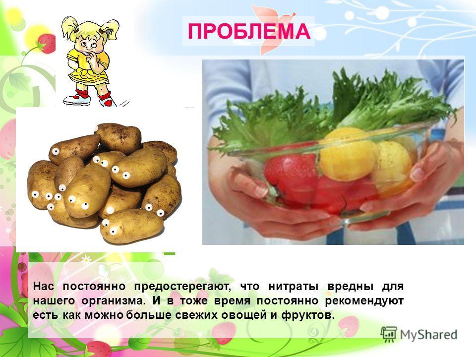 ПРОБЛЕМА Нас постоянно предостерегают, что нитраты вредны для нашего организма. И в тоже время постоянно рекомендуют есть как можно больше свежих овощей и фруктов.