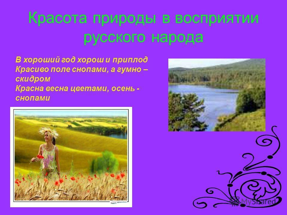 Красота природы в восприятии русского народа В хороший год хорош и приплод Красиво поле снопами, а гумно – скидром Красна весна цветами, осень - снопами