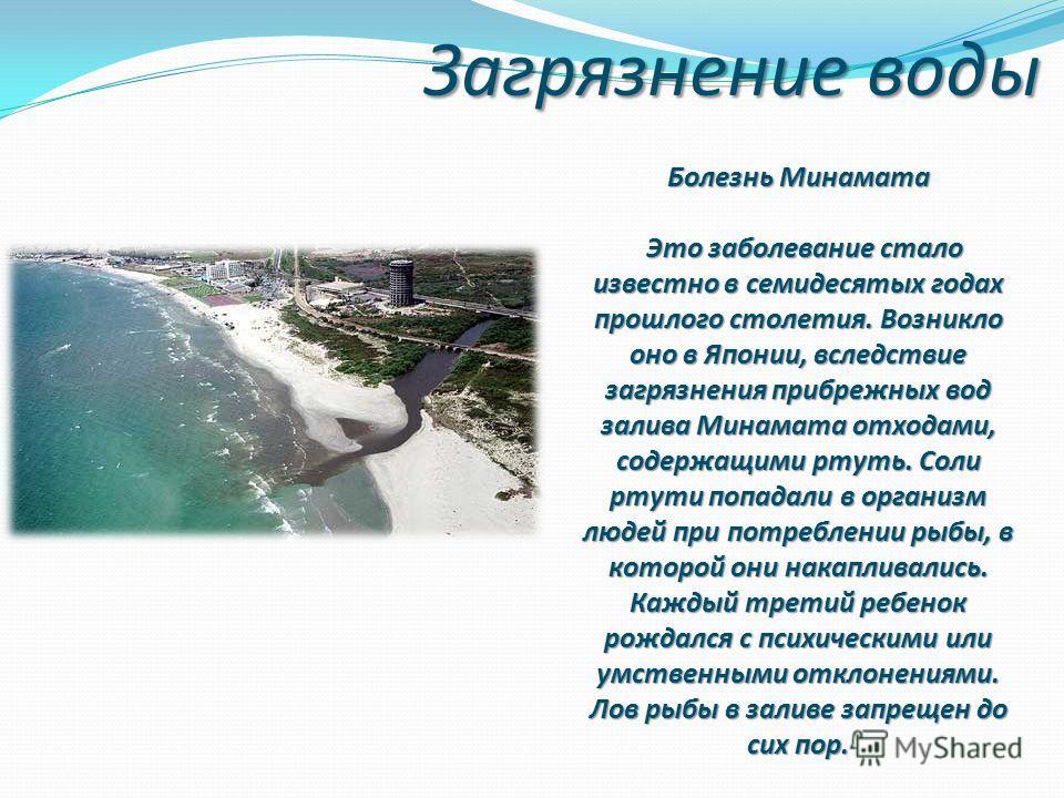 Загрязнение воды Болезнь Минамата Это заболевание стало известно в семидесятых годах прошлого столетия. Возникло оно в Японии, вследствие загрязнения прибрежных вод залива Минамата отходами, содержащими ртуть. Соли ртути попадали в организм людей при