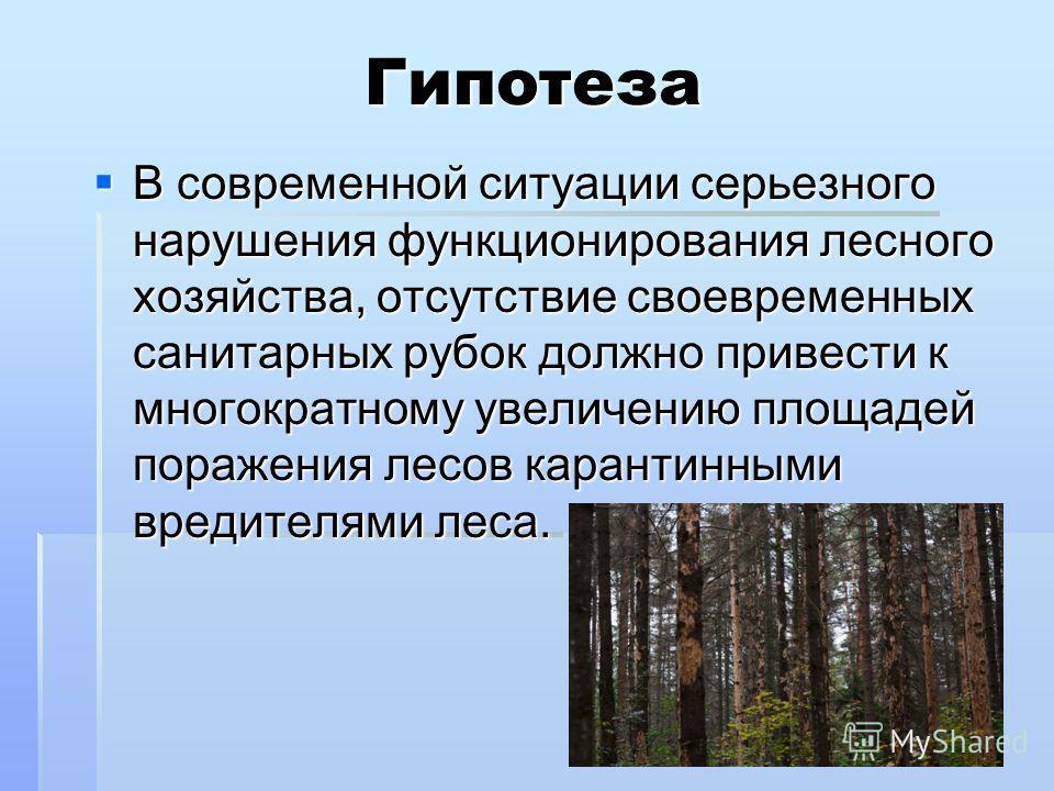 Гипотеза В современной ситуации серьезного нарушения функционирования лесного хозяйства, отсутствие своевременных санитарных рубок должно привести к многократному увеличению площадей поражения лесов карантинными вредителями леса. В современной ситуац