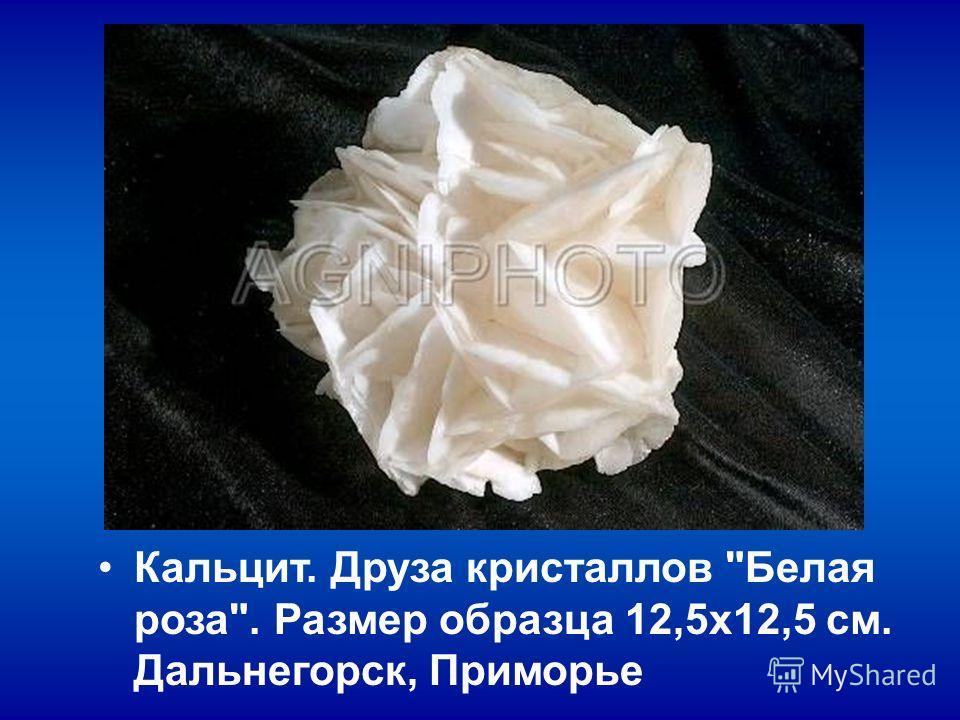 Кальцит. Друза кристаллов Белая роза. Размер образца 12,5х12,5 см. Дальнегорск, Приморье