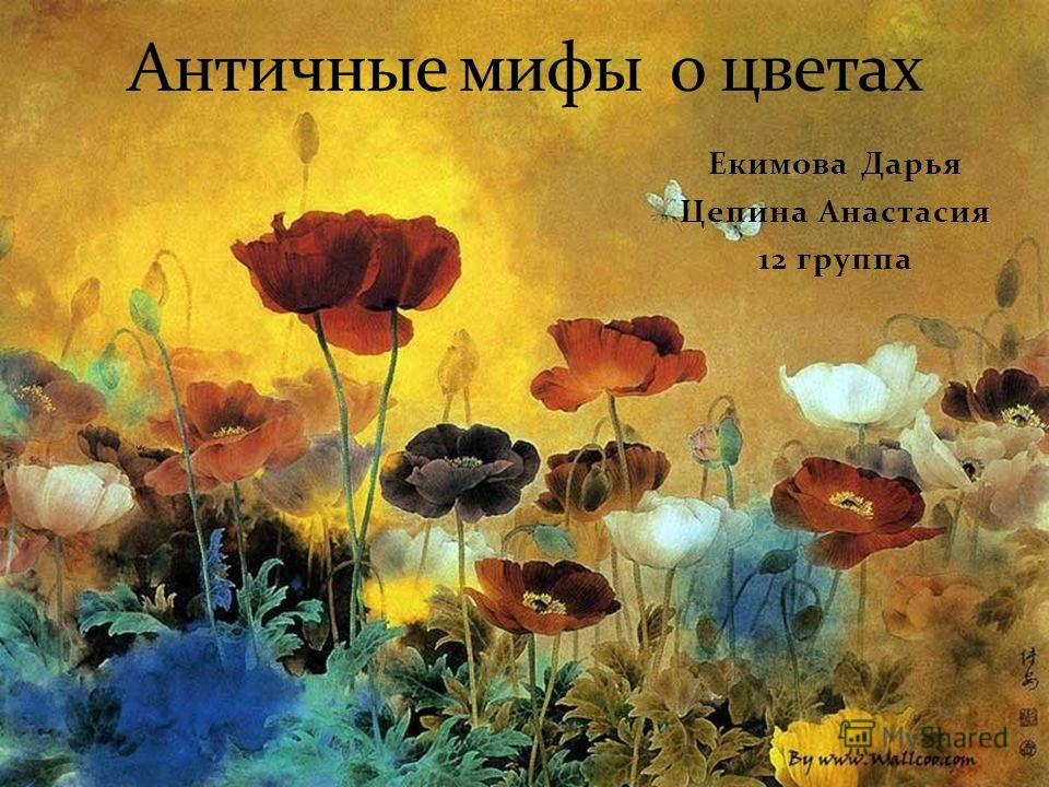 Екимова Дарья Цепина Анастасия 12 группа