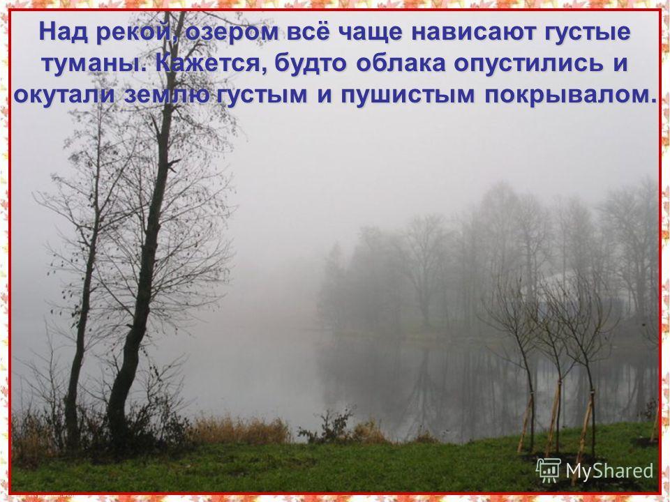 Над рекой, озером всё чаще нависают густые туманы. Кажется, будто облака опустились и окутали землю густым и пушистым покрывалом.