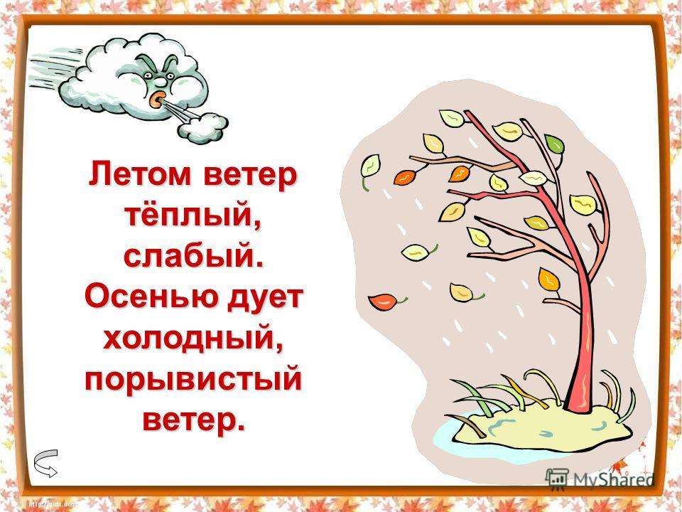 Летом ветер тёплый, слабый. Осенью дует холодный, порывистый ветер.