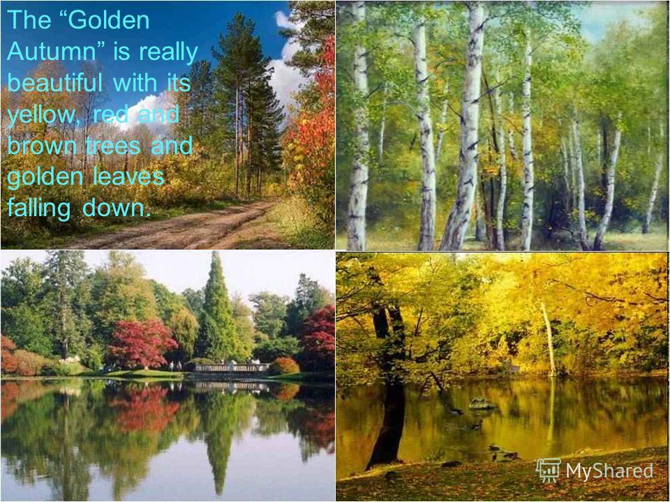 The Golden Autumn is really beautiful with its yellow, red and brown trees and golden leaves falling down.