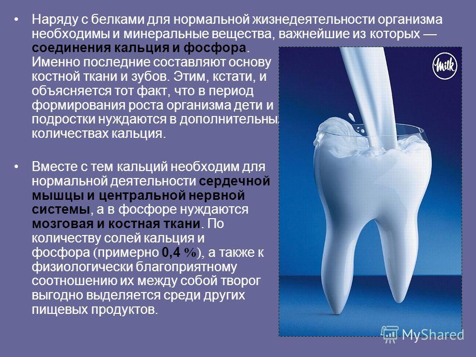 Наряду с белками для нормальной жизнедеятельности организма необходимы и минеральные вещества, важнейшие из которых соединения кальция и фосфора. Именно последние составляют основу костной ткани и зубов. Этим, кстати, и объясняется тот факт, что в пе