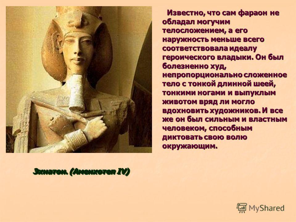 Известно, что сам фараон не обладал могучим телосложением, а его наружность меньше всего соответствовала идеалу героического владыки. Он был болезненно худ, непропорционально сложенное тело с тонкой длинной шеей, тонкими ногами и выпуклым животом вря