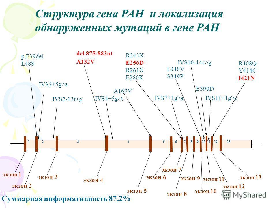 экзон 1 экзон 3 экзон 2 экзон 5 экзон 9 экзон 10 экзон 11 экзон 12 экзон 13 экзон 7 экзон 8 экзон 6 экзон 4 p.F39del L48S IVS2+5g>a IVS2-13t>g 1 2 3 4 5 6 7 8 9 10 11 12 13 IVS4+5g>t del 875-882nt A132V A165V R243X E256D R261X E280K IVS7+1g>a L348V S