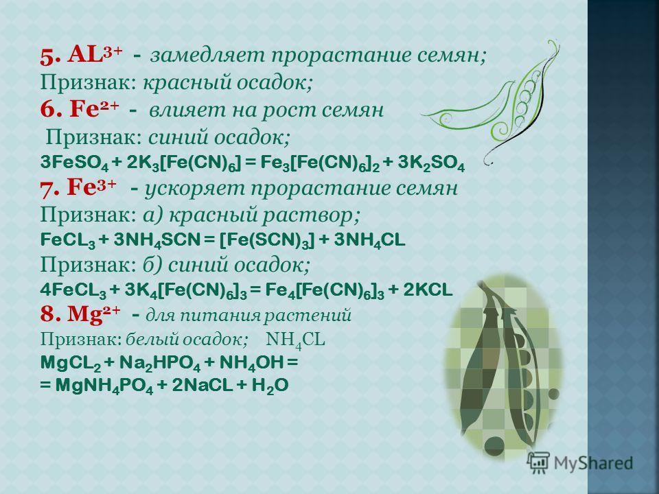 5. AL 3+ - замедляет прорастание семян; Признак: красный осадок; 6. Fe 2+ - влияет на рост семян Признак: синий осадок; 3FeSO 4 + 2K 3 [Fe(CN) 6 ] = Fe 3 [Fe(CN) 6 ] 2 + 3K 2 SO 4 7. Fe 3+ - ускоряет прорастание семян Признак: а) красный раствор; FeC