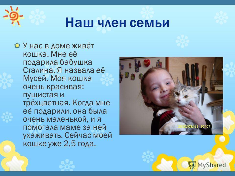 У нас в доме живёт кошка. Мне её подарила бабушка Сталина. Я назвала её Мусей. Моя кошка очень красивая: пушистая и трёхцветная. Когда мне её подарили, она была очень маленькой, и я помогала маме за ней ухаживать. Сейчас моей кошке уже 2,5 года.