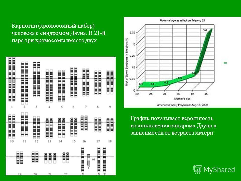 График показывает вероятность возникновения синдрома Дауна в зависимости от возраста матери Кариотип ( хромосомный набор ) человека с синдромом Дауна. В 21- й паре три хромосомы вместо двух