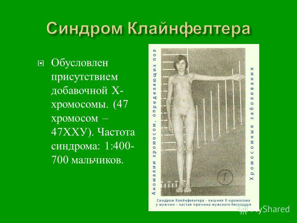 Обусловлен присутствием добавочной Х - хромосомы. (47 хромосом – 47 ХХУ ). Частота синдрома : 1:400- 700 мальчиков.