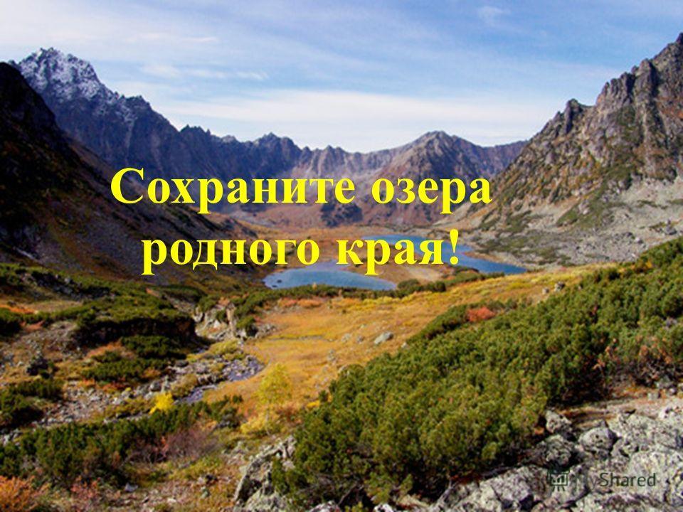 Сохраните озера родного края!