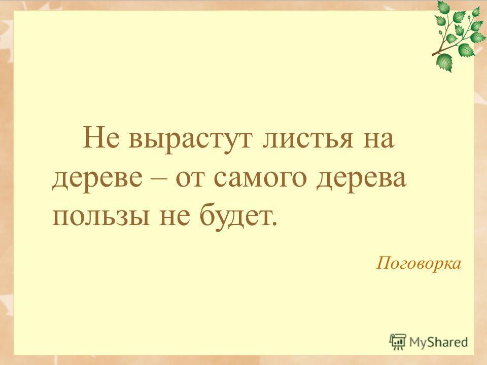 Не вырастут листья на дереве – от самого дерева пользы не будет. Поговорка