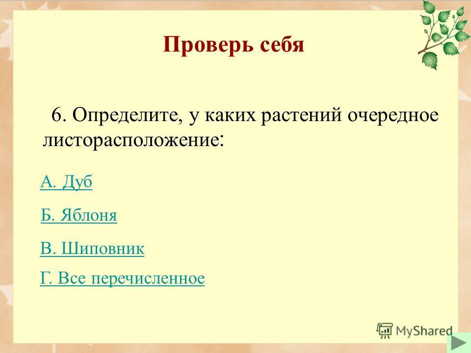 Проверь себя 6. Определите, у каких растений очередное листорасположение : Б. ЯблоняБ. Яблоня В. Шиповник А. Дуб Г. Все перечисленное