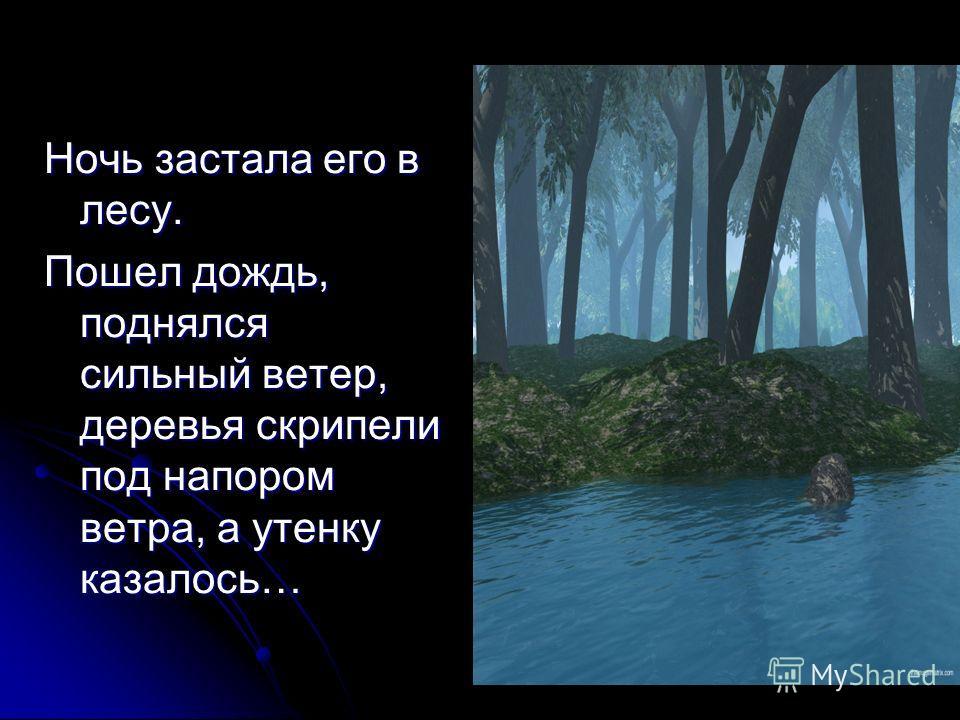 Ночь застала его в лесу. Пошел дождь, поднялся сильный ветер, деревья скрипели под напором ветра, а утенку казалось…
