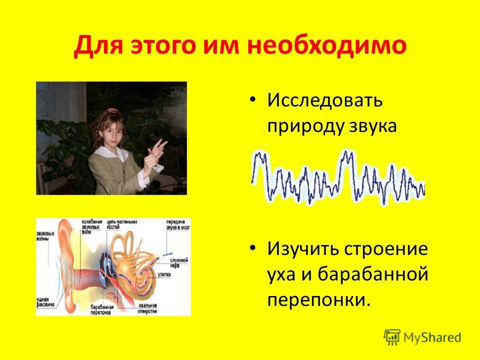 Для этого им необходимо Исследовать природу звука Изучить строение уха и барабанной перепонки.