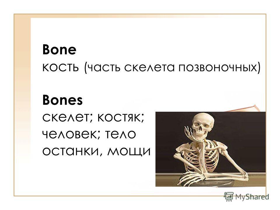 Bone кость (часть скелета позвоночных) Bones скелет; костяк; человек; тело останки, мощи