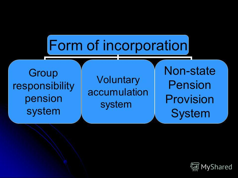 Form of incorporation Group responsibility pension system Voluntary accumulation system Non-state Pension Provision System
