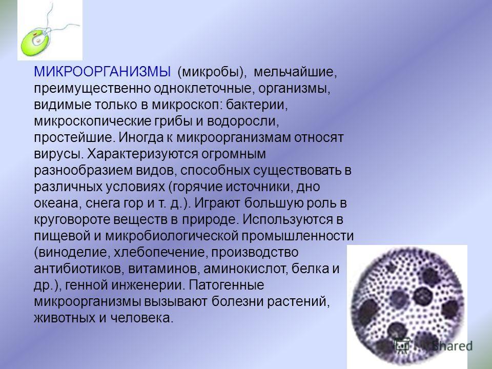 МИКРООРГАНИЗМЫ (микробы), мельчайшие, преимущественно одноклеточные, организмы, видимые только в микроскоп: бактерии, микроскопические грибы и водоросли, простейшие. Иногда к микроорганизмам относят вирусы. Характеризуются огромным разнообразием видо