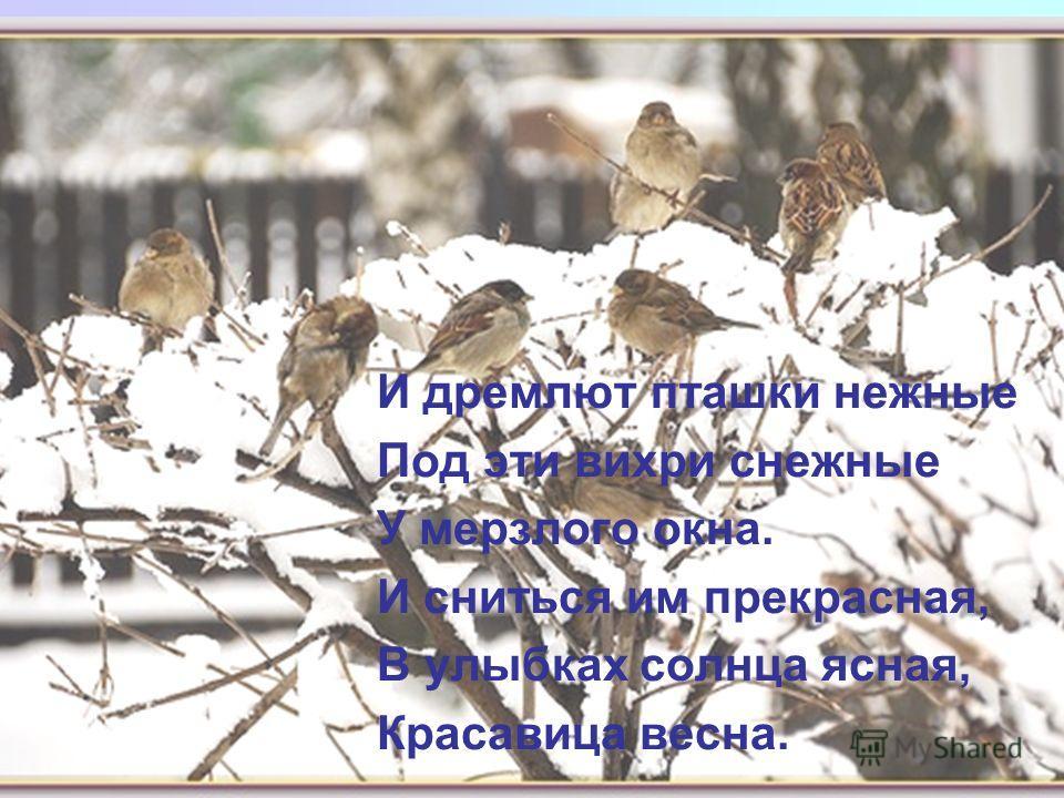 И дремлют пташки нежные Под эти вихри снежные У мерзлого окна. И сниться им прекрасная, В улыбках солнца ясная, Красавица весна.