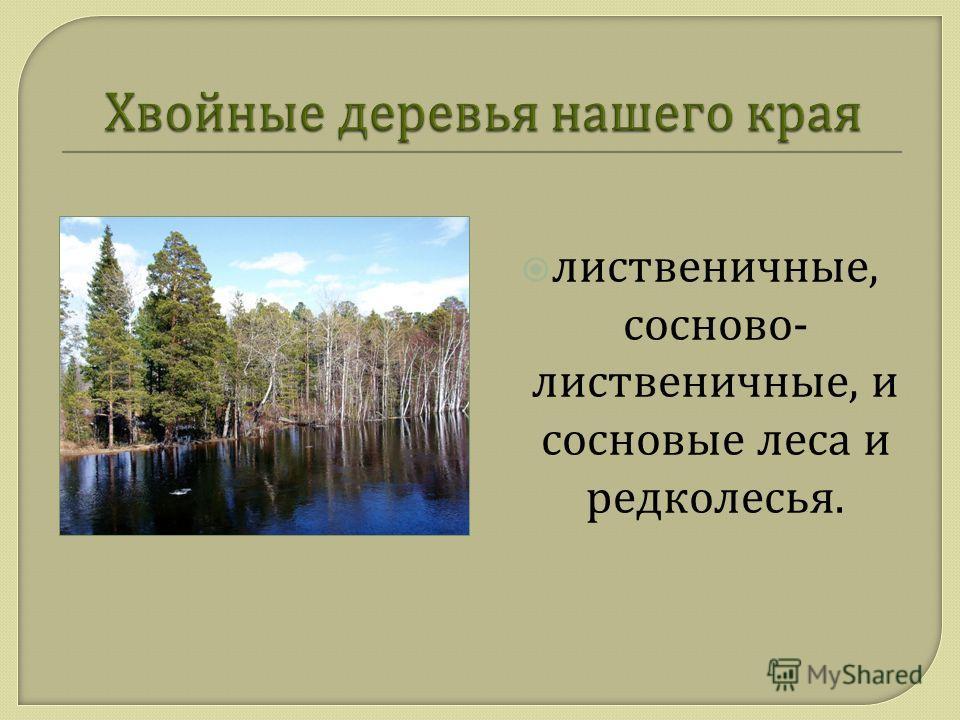 лиственичные, сосново - лиственичные, и сосновые леса и редколесья.