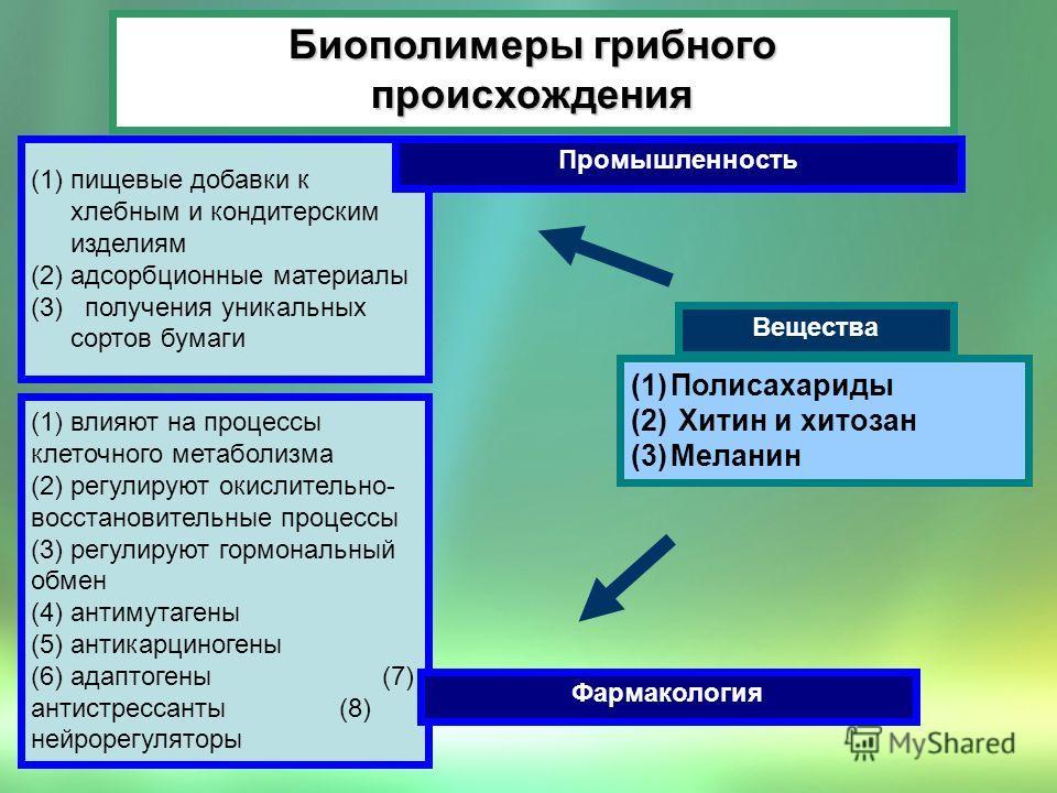 Биополимеры грибного происхождения (1)пищевые добавки к хлебным и кондитерским изделиям (2)адсорбционные материалы (3) получения уникальных сортов бумаги Промышленность (1)Полисахариды (2) Хитин и хитозан (3)Меланин Вещества (1) влияют на процессы кл